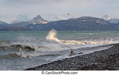 Gaivotas, respingue, ondas