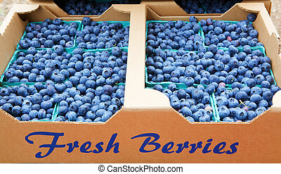 Fresh Blue berries - Cardboard carton of baskets of blue...