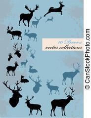 different deers