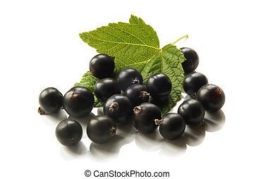 Berries of a black currant with leaf