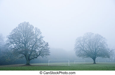 Football soccer pitch on foggy misty morning in Autumn Fall...