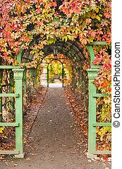 pergola in autumn park