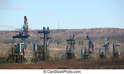 oil pumps in a row - working oil pumps in a row