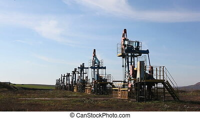 row oil pumps - row of many working oil pumps