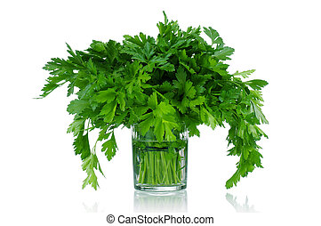 Fresh parsley - Fresh green leaves of parsley on white...