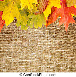 autumn frame on canvas background