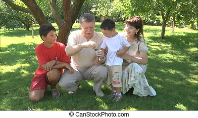 grandparents with grandchildren - grandparents play with...