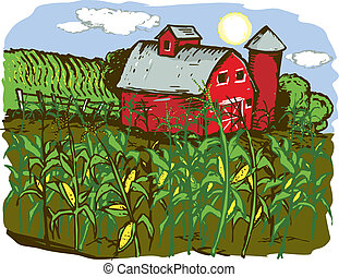 Corn Farm - A barn with corn crops in the foreground