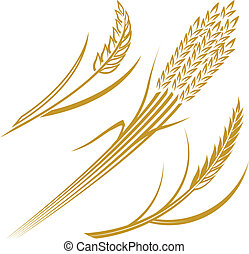 Wheat Elements - Abstract wheat icon and symbol clip art