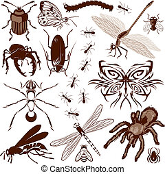 Insect Collection - Clip art collection of bugs and creepy...