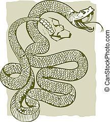 Rattlesnake - A angry rattlesnake