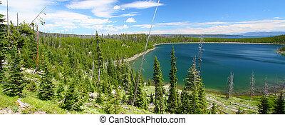 Yellowstone Summer Scenery