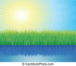 Green grass, water and sun
