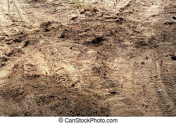 Tire Tracks in Dirt