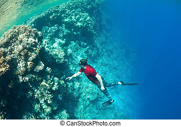freediving - Underwater life. Man in red snorkeling at a...