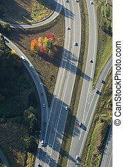 Autumn Trees Along Highway - Aerial