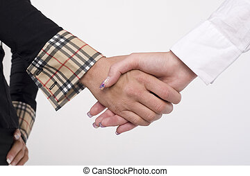 Business women shaking hands - Portrait of successful...