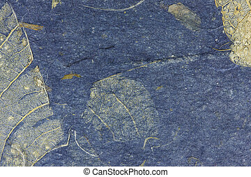 Grunge leaf texture
