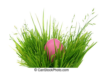 Easter egg hidden in grass