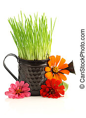 Watering can with grass & flowers