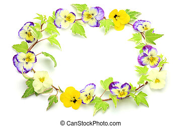 viola and ivy - I make a frame with a viola and ivy I took...