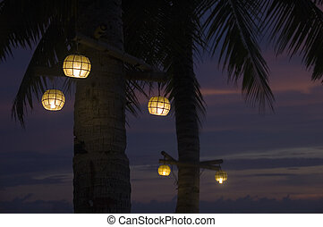 Lit lanterns in the coconut tree on the beach of Borracay