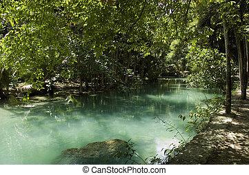 Green Kawasan river and foliage at Moalboal, Cebu island,...