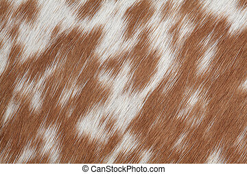 Cowhide brown - Macro photo of real brown and white cowhide.