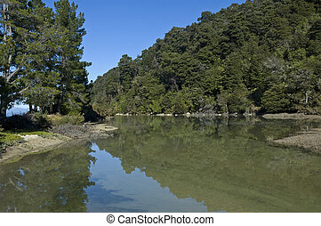 coast in the Abel Tasman National Park, New Zealand, Southern Island, oceania