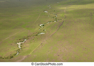 Masai Mara -  seen by airplane