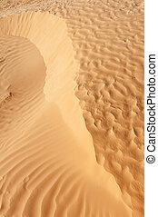 Detail of desert dune - Detail of a beautiful desert sand...
