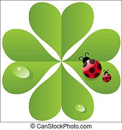 vector clover  leaf with ladybird.
