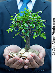 Tree in hands of businessman