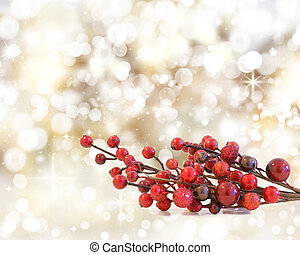 Christmas Berries - Christmas berries on a background of...