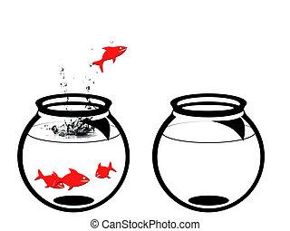freedom - goldfish leaving the aquarium