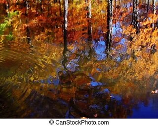 Fall Reflections Loop SD - Seamless loop features colorful...