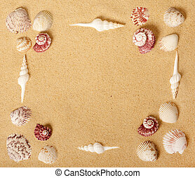 Seashell Picture Frame - Seashell and Sand Picture Frame