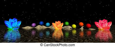 chakra and water lily