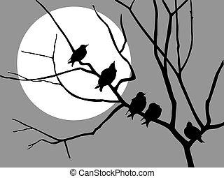 illustration migrating starling on branch tree