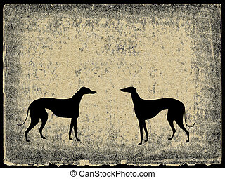 illustration greyhound on grunge background