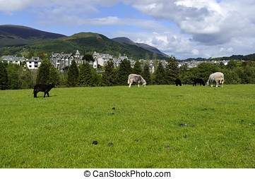 Keswick - View of Keswick and Skiddaw in Lake District...