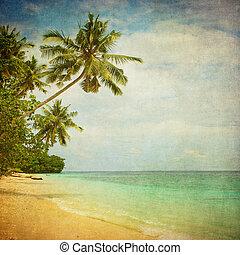 Grunge, imagen, tropical, playa