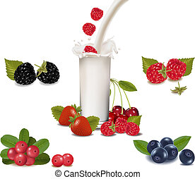 Raspberry and strawberry falling into the milk splash Vector...