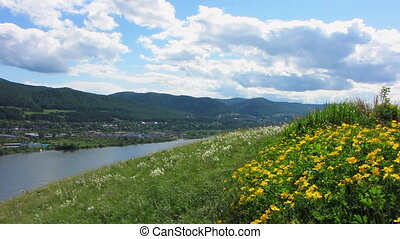Nature - landscape 10 - Green grass, yellow buttercups and...