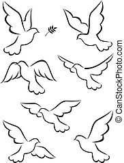 Dove vector collection