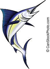 Marlin, vector