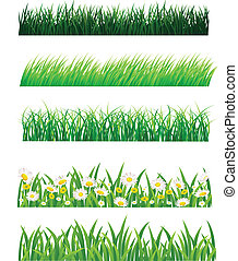 Grass - Vector illustration of grass collection