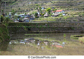 Batad - Water, traditional houses and rice fields in Batad,...