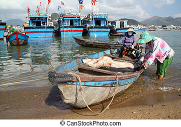 Women and shark in Nha Trang - Women with shark in the boat...