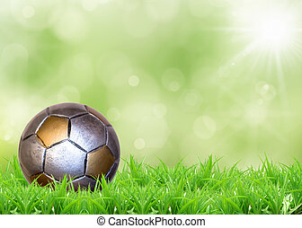 a soccer football on a fresh green background